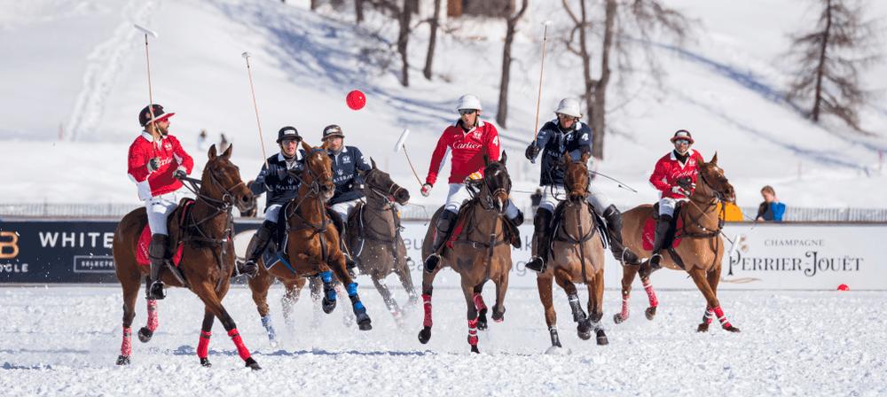 Snow Polo - Elite de invierno