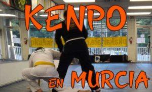 karate kempo Murcia
