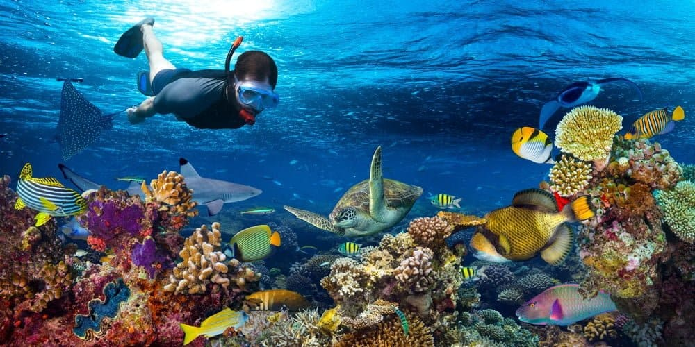 mascaras para bucear bajo el agua