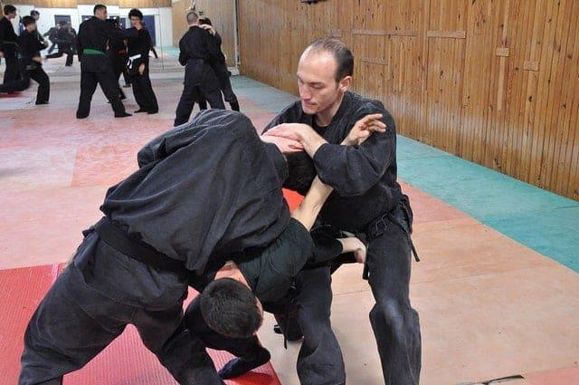 ninjutsu escuelas