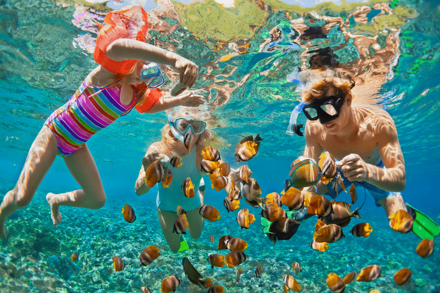 snorkel tenerife