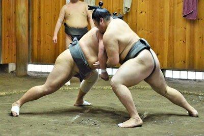 la luchadores gordos de Japon
