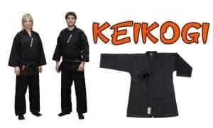 como visten los ninjas
